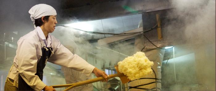 蒸し上がったお米を蔵人が掘りあげます