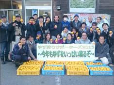 陸前高田市でのゆず狩りボランティアの様子